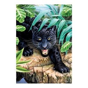 Laste Maaliikomplekt Black Leopard