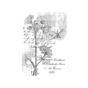 First Edition Rubber Stamps A7  Flower And Bird Grid