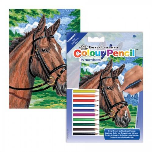 Laste Maaliikomplekt Hobune