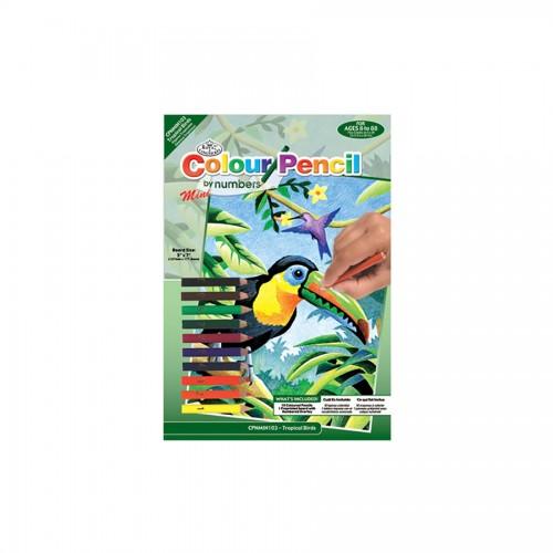 Laste Maaliikomplekt Troopilised Linnud
