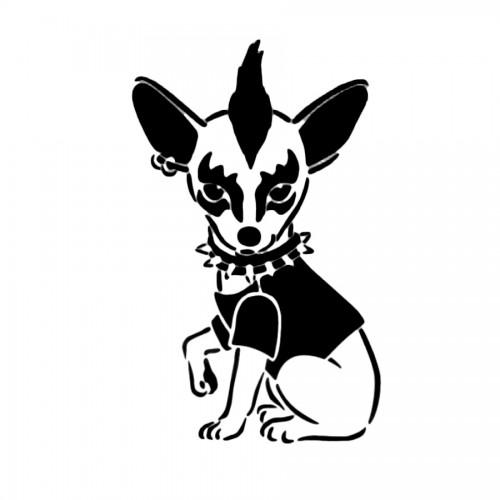 Hund Punky A4