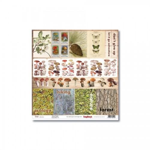 Scrapbookingu paber 30x30 cm-   Forest Natural Beauty 190Gsm