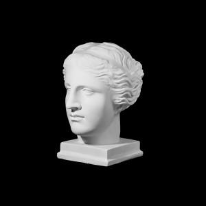 Plaster Cast The Head Of Venus