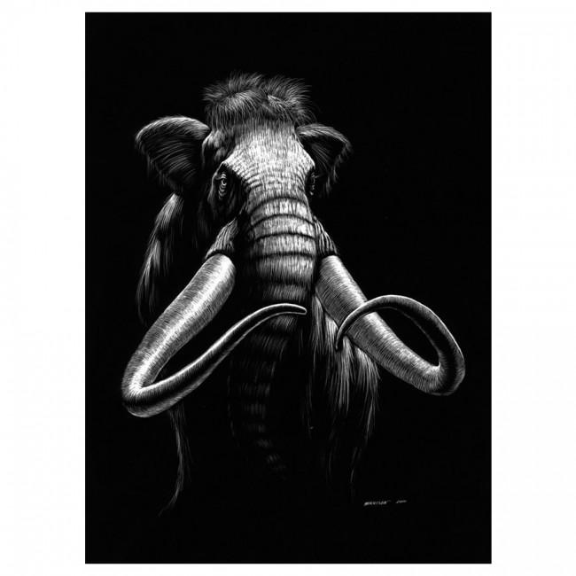 Gravüürikomplekt Mammut