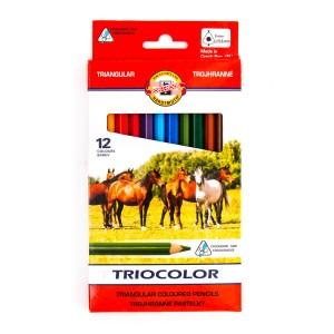 Värvipliiatsite K-T Triocolor 12Tk Jäme 3142