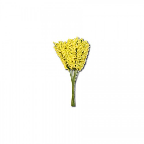 12 Mimoses Bouquet