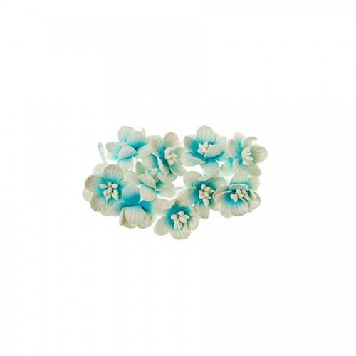 Cherry Blossom, 10 Pcs Sky-White