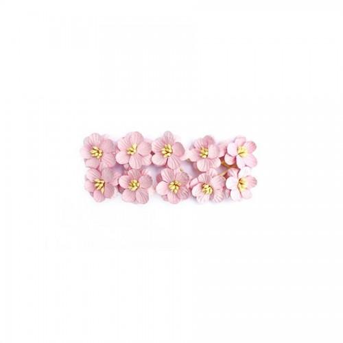 Cherry Blossom, 10 Pcs Light-Rose