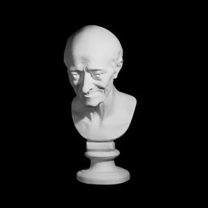 Гипсовая Модель Голова Вольтера