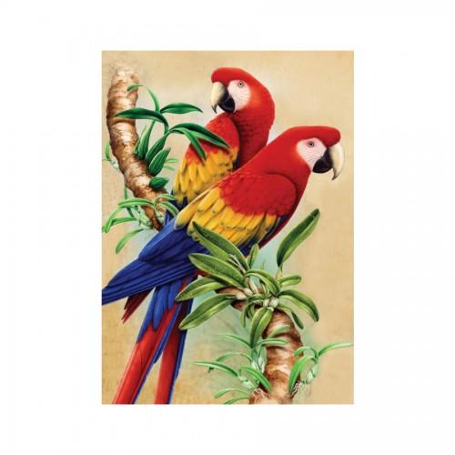 Набор Для Рисования Папугаи
