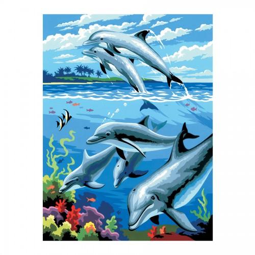 Рисование По Номерам Дельфины