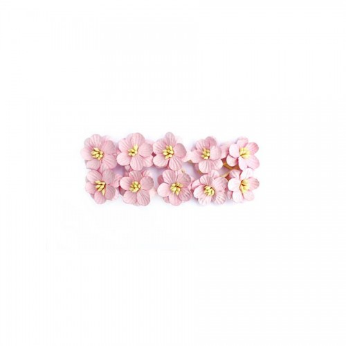 Cherry Blossom, 10 Pcs Light-Rose