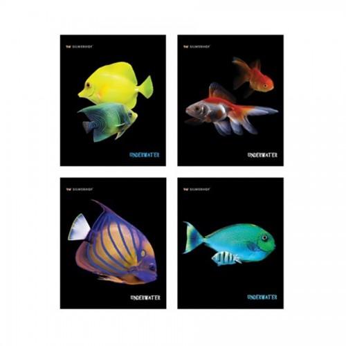 """Тетрадь 48Л, Клетка А5 """"Aquarium Fish"""", Обложка Ме"""