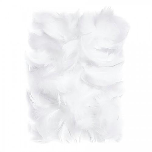 Перья 5-12 См, 10 Г Белый
