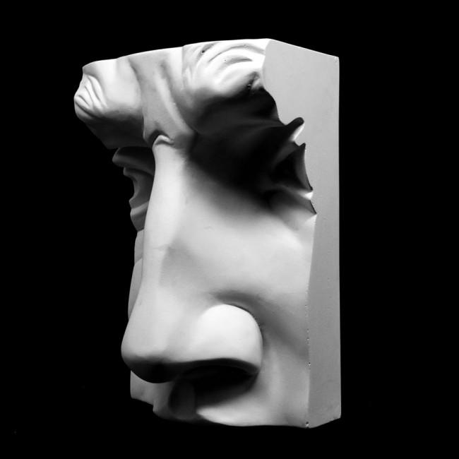 Plaster Cast The Davids Nose