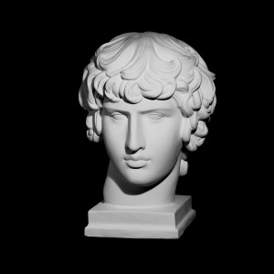 Plaster Cast The Head Of Antinous