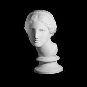 Plaster Cast The Head Of Aphrodite