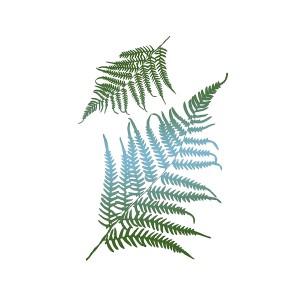 Stencil G Cm.21X29,7 Fern Leaves
