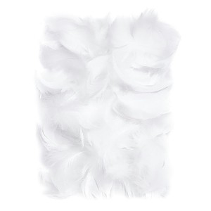 Feathers 5-12 Cm, 10 G White