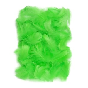 Feathers 5-12 Cm, 10 G Green