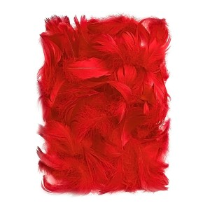 Feathers 5-12 Cm, 10 G Red