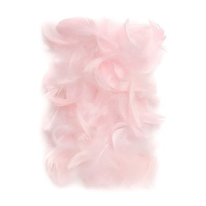 Feathers 5-12 Cm, 10 G Pink
