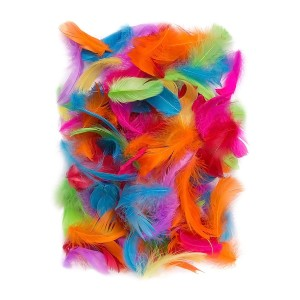 Feathers 5-12 Cm, 10 G Brights