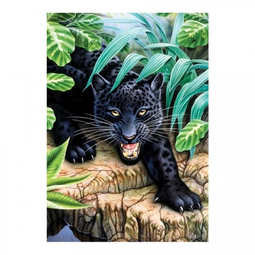 Junior Paint By Numbers - Black Leopard