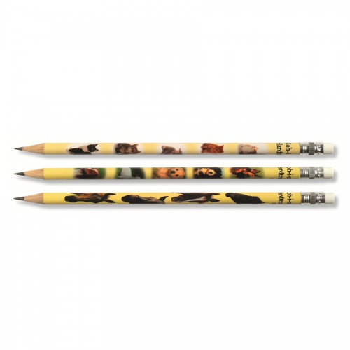 Graphite Pencils with eraser KOH-i-NOOR