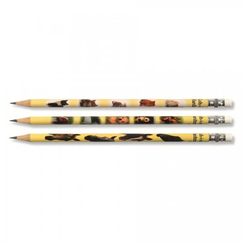 Graphite Pencils with eraser KOH-i-NOOR