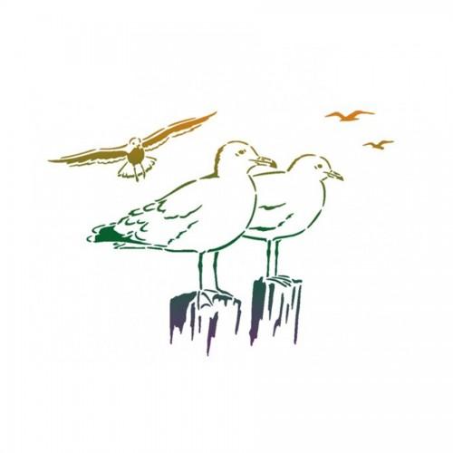 Gulls A3