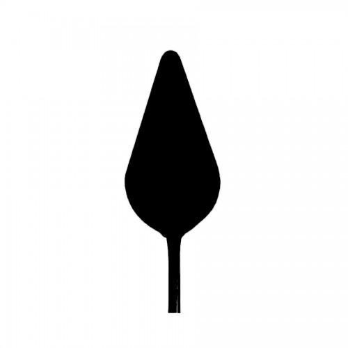 Мастихин 16315, Conda