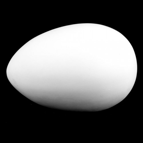 Plaster Cast The Egg