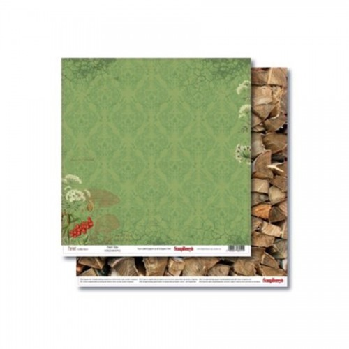 Double-Sided Paper 12X12 Forest Forest Edge 190Gsm